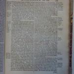 Domselaer 1665. Blz. 253
